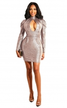 Pink Long Sleeve V-Neck Bodycons Girding Mini Dress