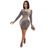 Silver Long Sleeve Mesh Rainstones Sexy Bodycon Dress